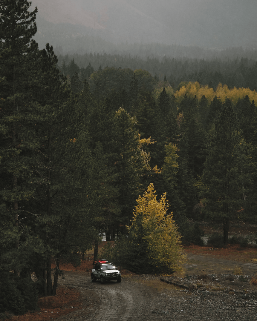 white truck driving up a dirt road in a pine forest