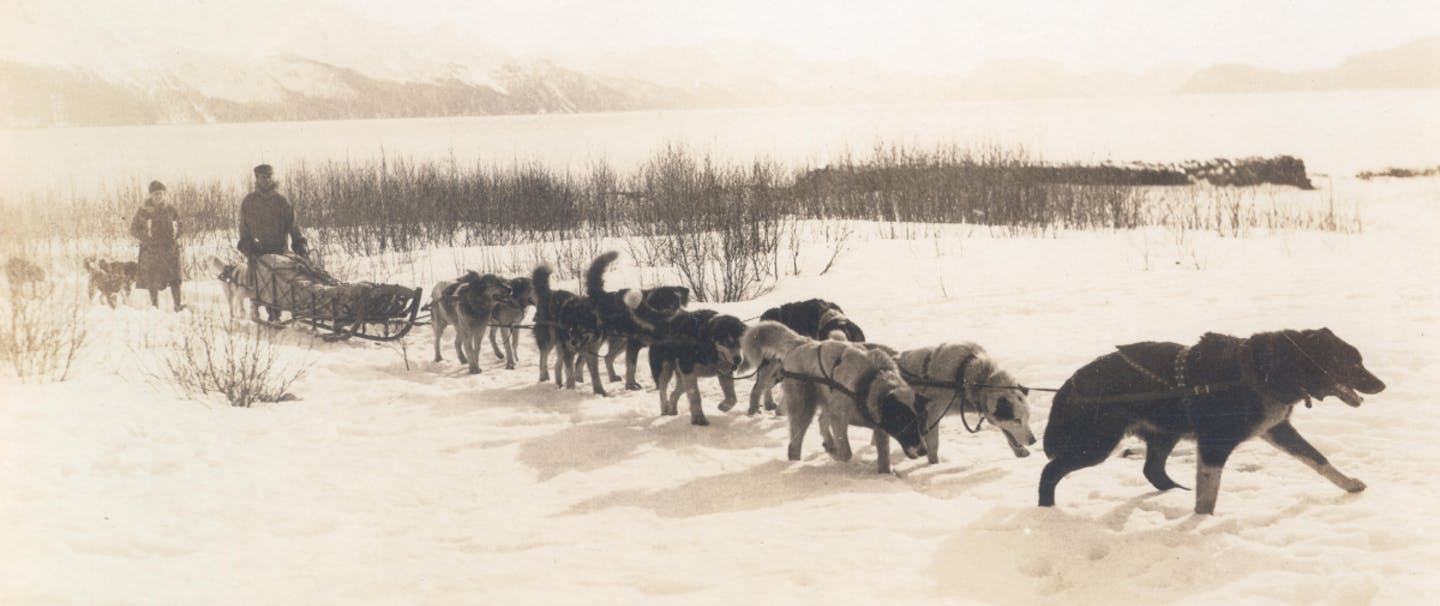 How to Train Your Dog to Pull a Sled_1200x628