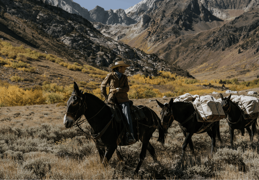 woman leading a team of pack mules up a trail with mountain peaks in the background