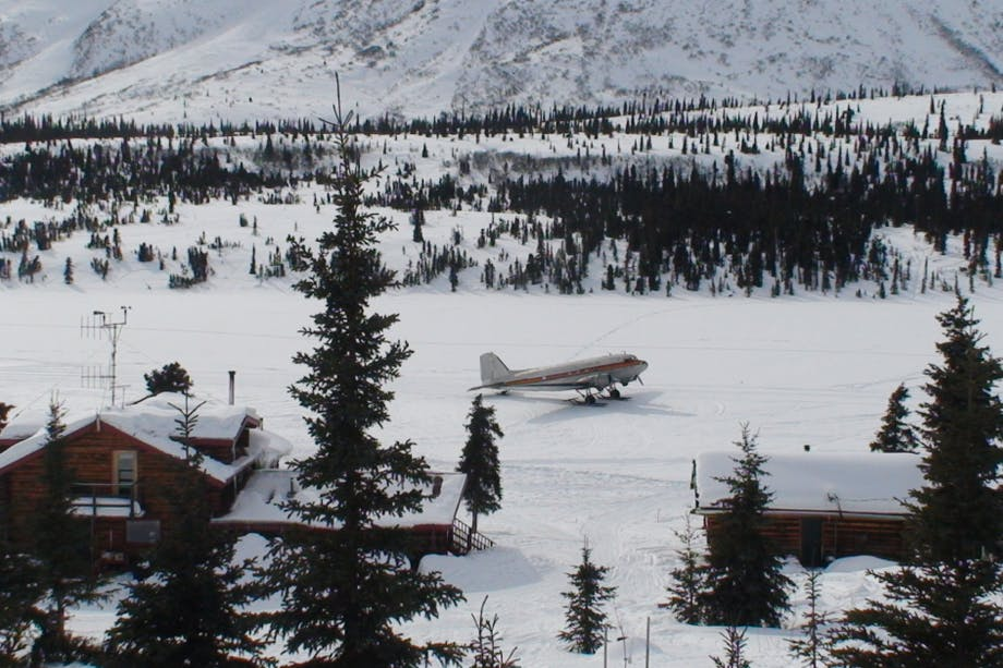 plane parked on a snowy runway in a pine forest