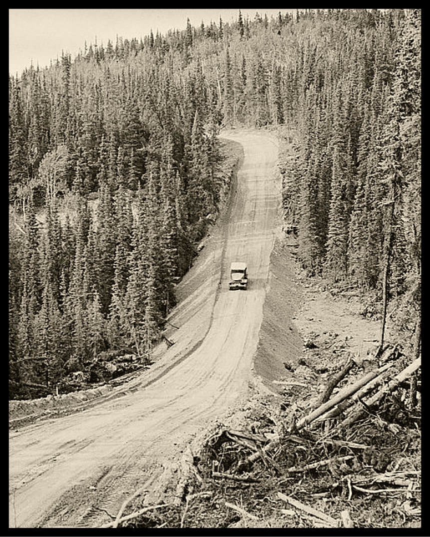 old black and white image of an antiquated car driving down a clear cut dirt road in a pine tree