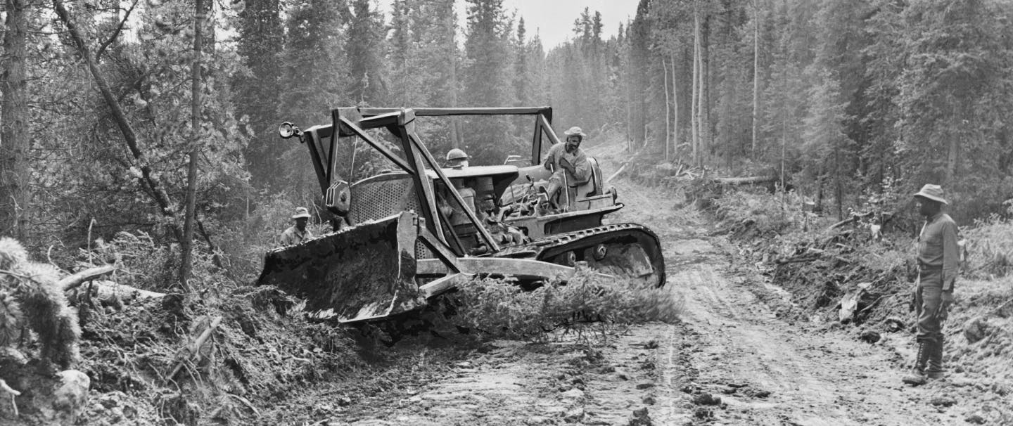 group of men working on clearing a path with a bulldozer in a pine forest