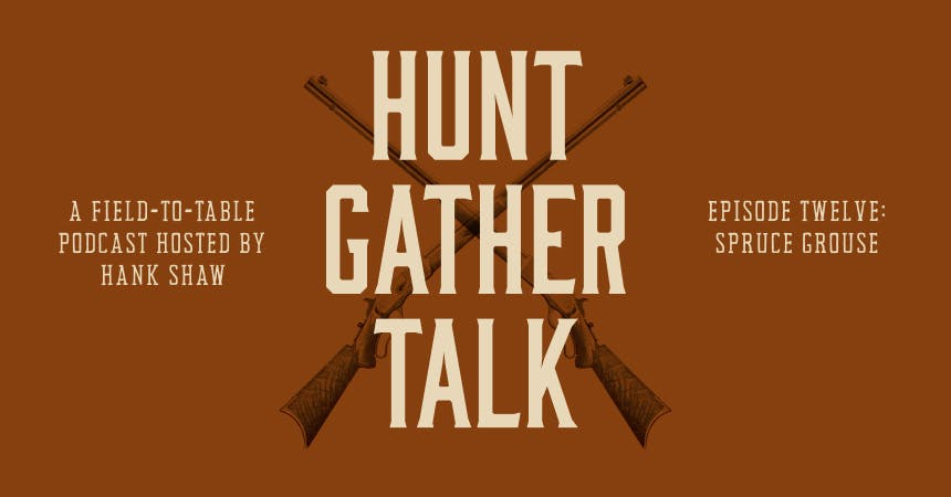 hgt-podcast-spruce-grouse-hero