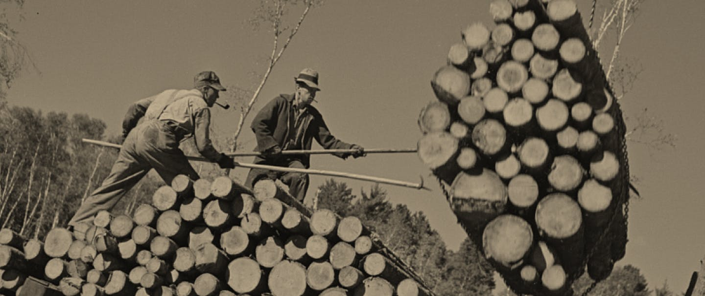 loggers standing on pile of cut trees guide hanging bundle of logs toward them with poles