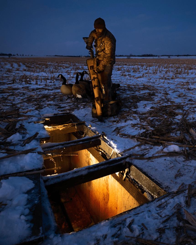 hunter at dusk in snowy field putting shotgun away and hiding ducks in underground duck blind