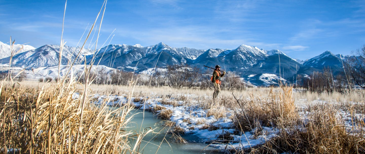 Winter Upland Hunting Guide_1200x628_V2