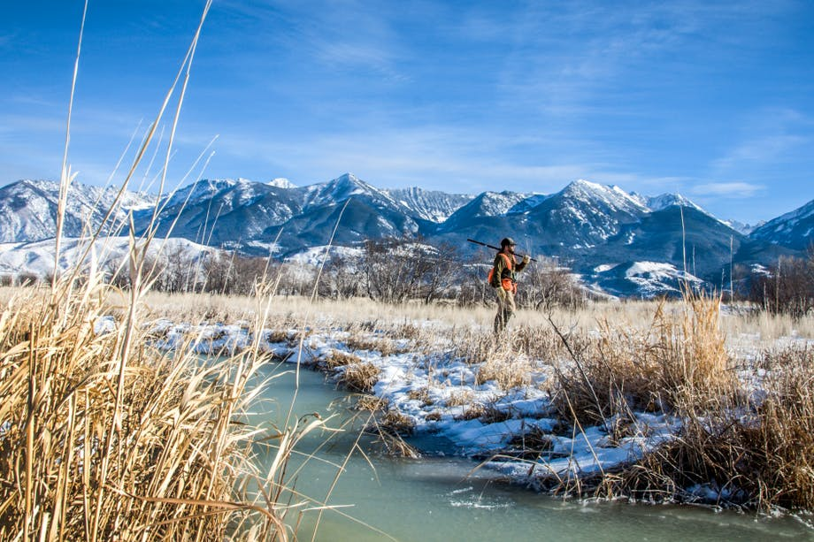 Hunter in high visibility vest with shotgun walking through snowy grassland with river with mountain backdrop