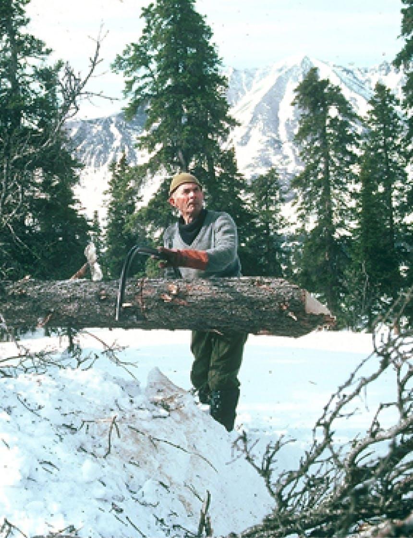 Richard Proenneke sawing a log in Alaskan Forest