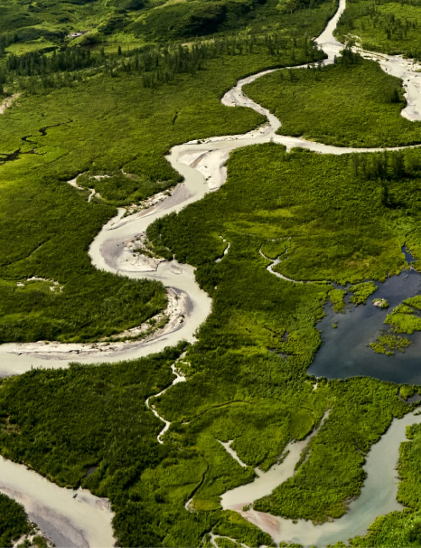 Aerial View of Winding River in Lush Green Wildland