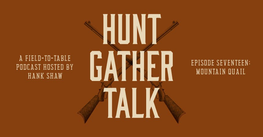 Promotional image for Hunt Gather Talk Podcast hosted by Hank Shaw Episode 17: Mountain Quail