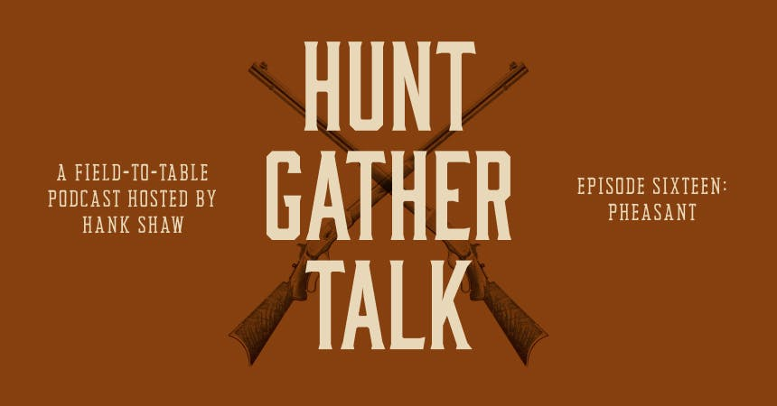 Promotional image for Hunt Gather Talk Podcast hosted by Hank Shaw Episode 16: Pheasant