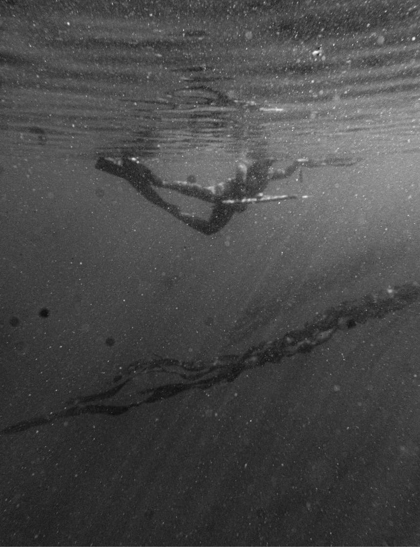 person swimming under the surface of the water in flippers holding a harpoon gun