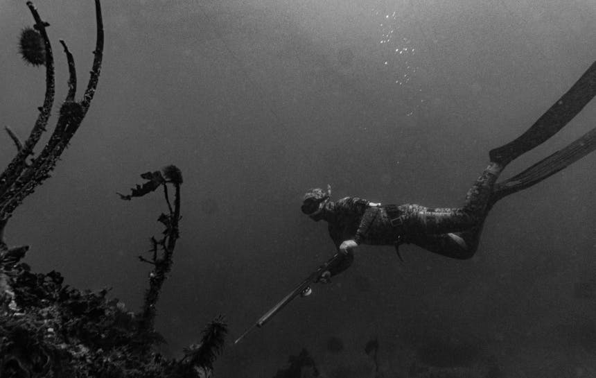 person swimming underwater with large flippers and a harpoon gun