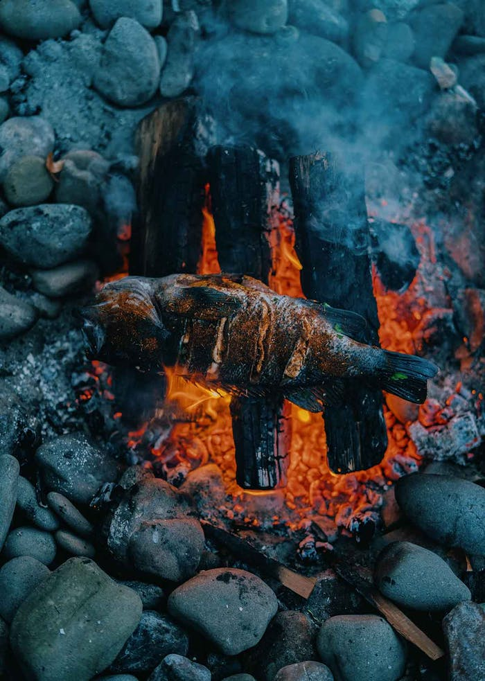 rockfish roasting over red hot coals