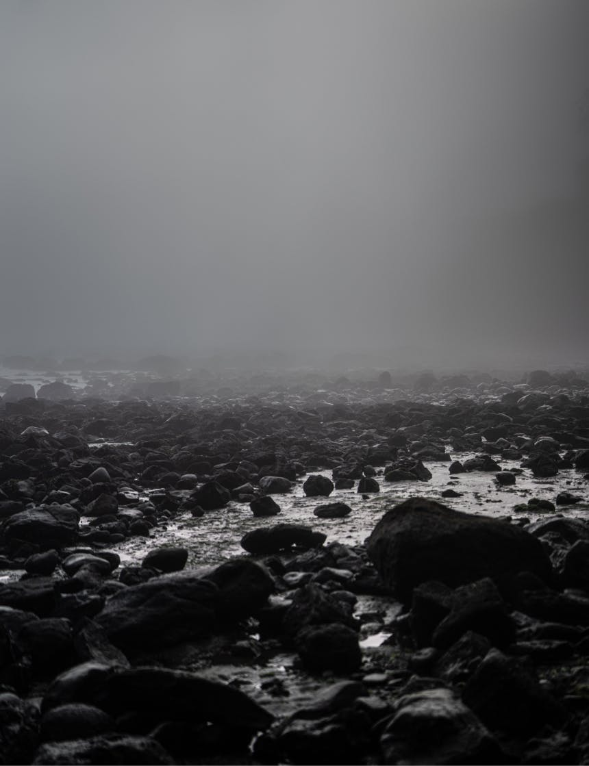 black rocks on a foggy beach stretching away to the horizon