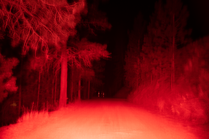 red blurry surreal image of a forest and dirt road at night