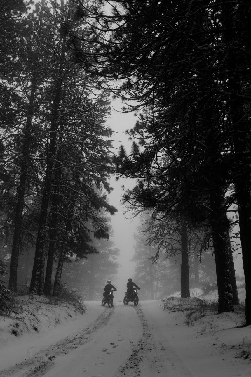 two people on motorcycles at the crest of a hill on a snow covered road in a pine forest