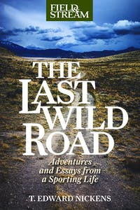 Book cover for The Last Wild Road.