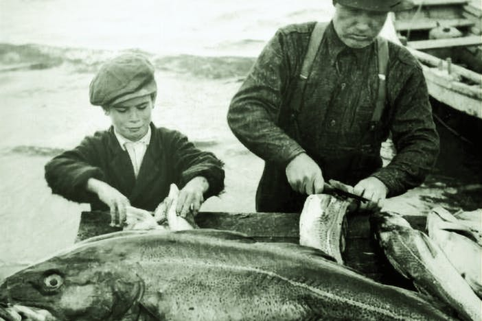 Archival image of a father and son filleting a fish.
