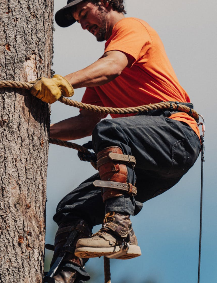 a man wearing a bright orange t-shirt, jeans and yellow gloves scaling a tree using a thick rope and carabiner to secure himself