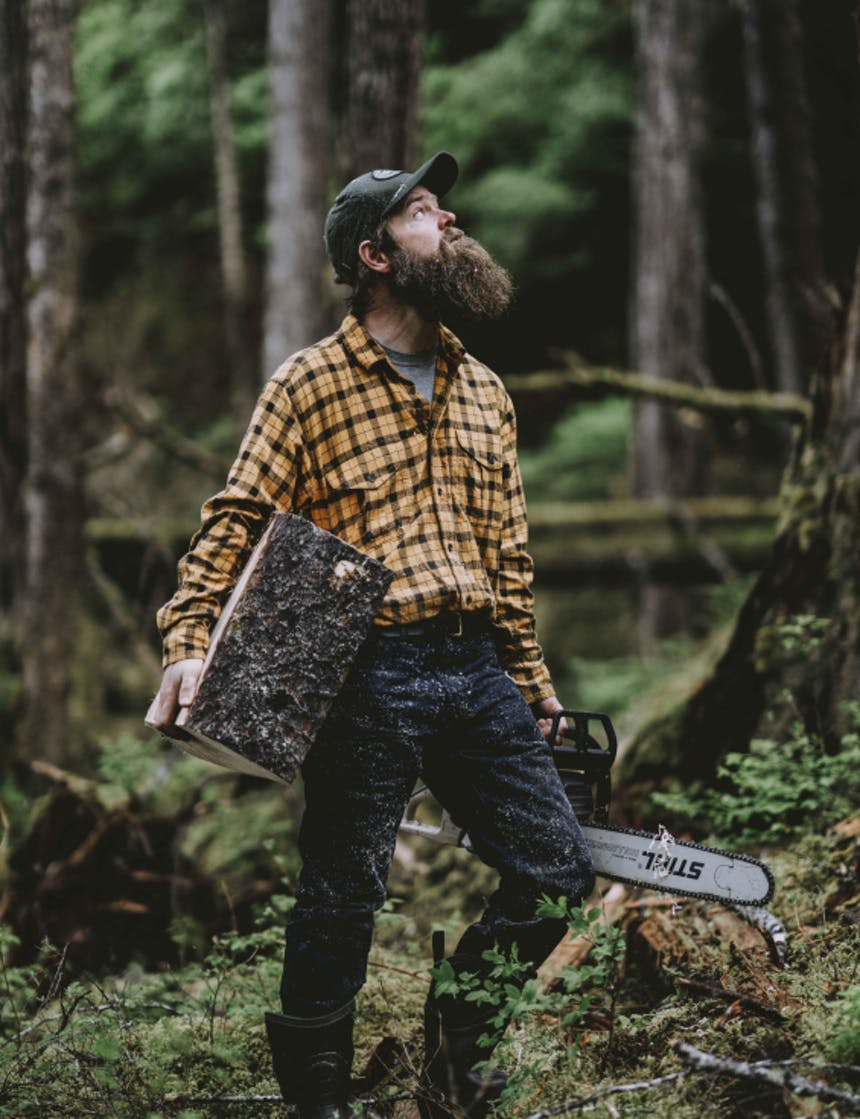 a middle aged bearded white man wearing a yellow flannel shirt, dark jeans and a green hat holding a block of wood and a chainsaw looking up at a tree to assess it