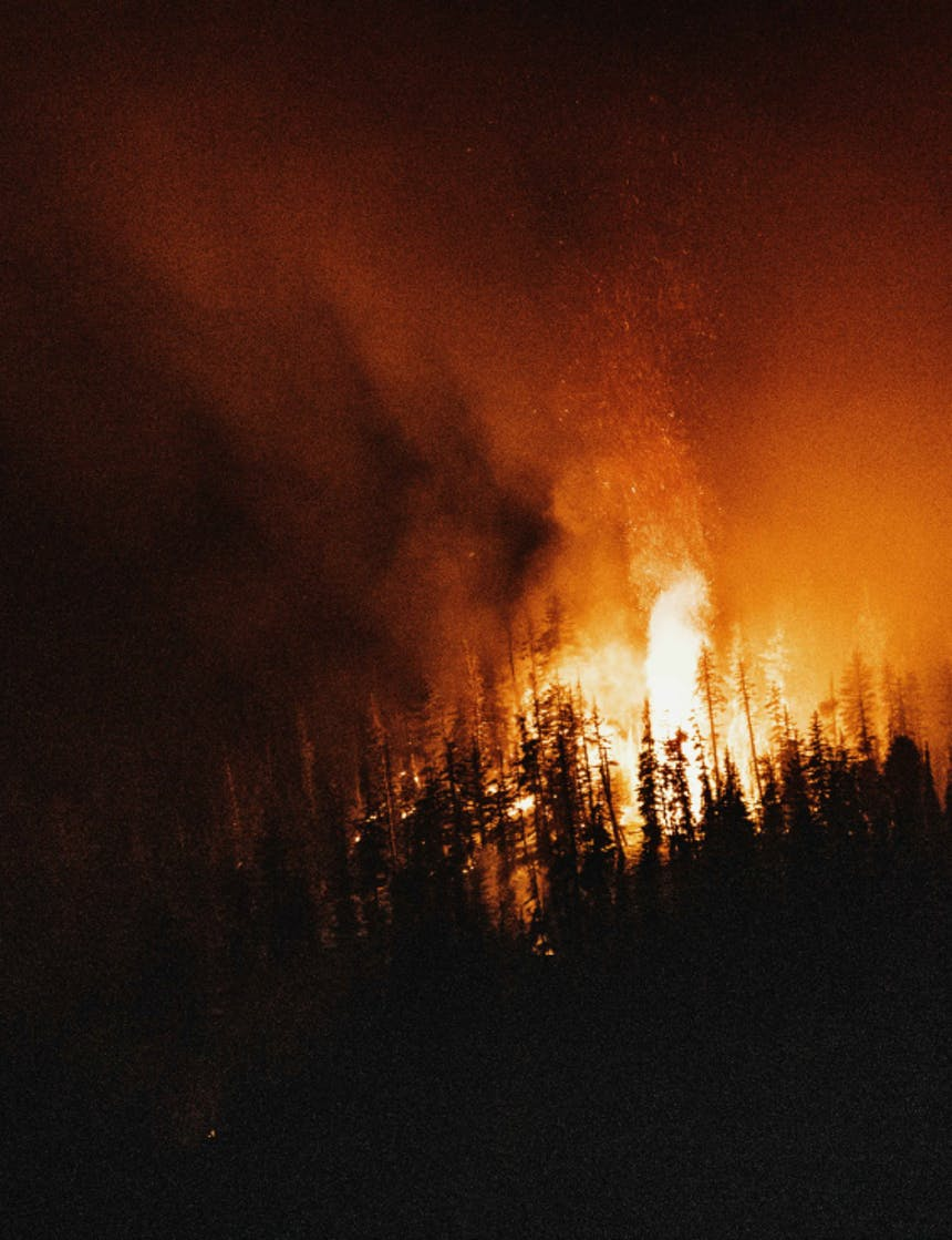 night image of flames raging through a forest