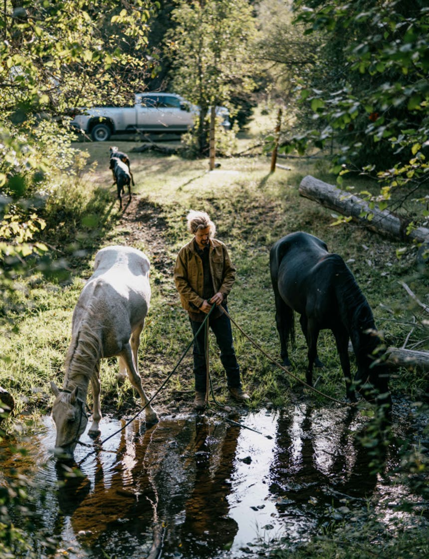 a man standing next to a large puddle where he holds two lead ropes for a black and white horse drinking as two dogs walk behind him towards a grey pickup truck