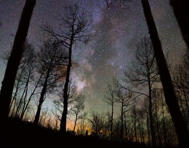 Great Rift of the Milky Way. White River National Forest.