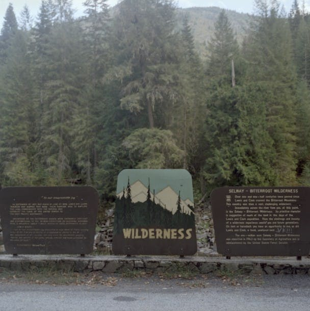 3wilderness