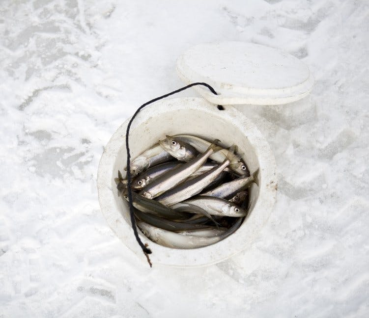 Filson Life - Ice FIshing - 18