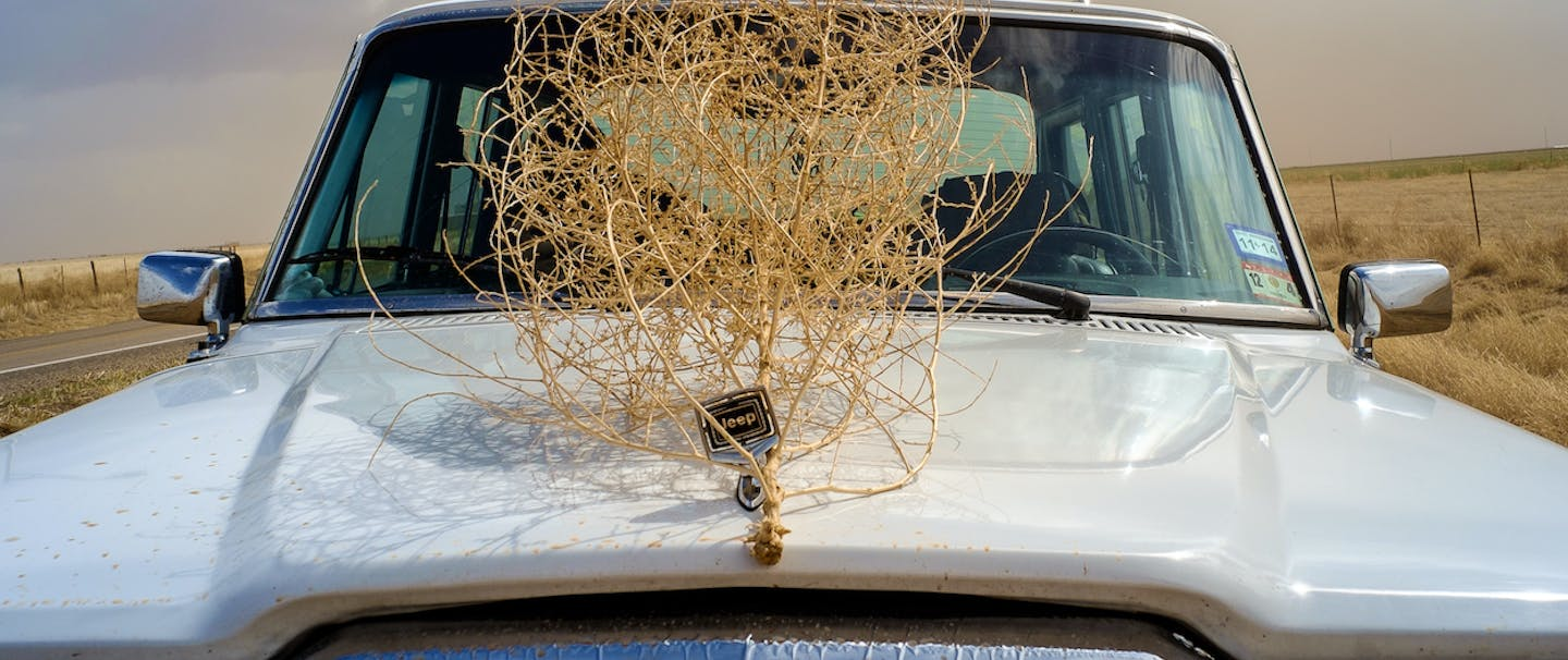 tumble weed hooked on hood of white jeep parked on side of road