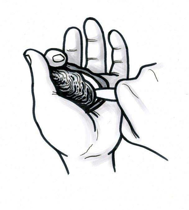 shuck-oyster-filson-2