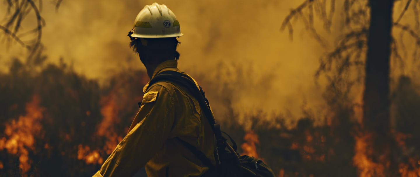 firefighter looks over his shoulder at burning forest underbrush