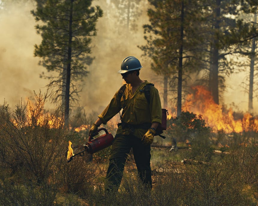 Man with flamethrower creating fire-line with flames in background in forest