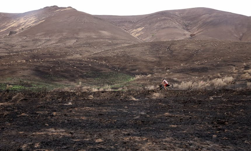 person biking through burned landscape with visible green regrowth