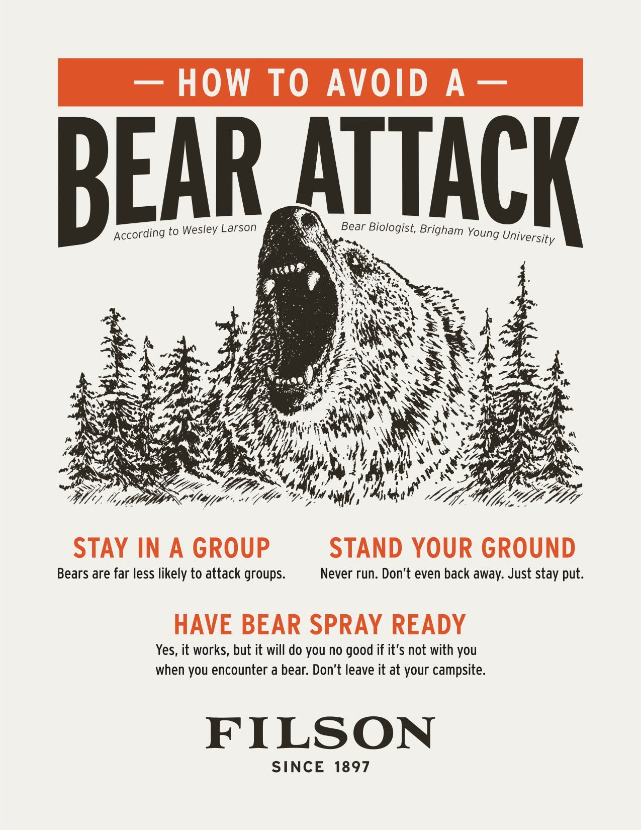 Bear Safety Poster