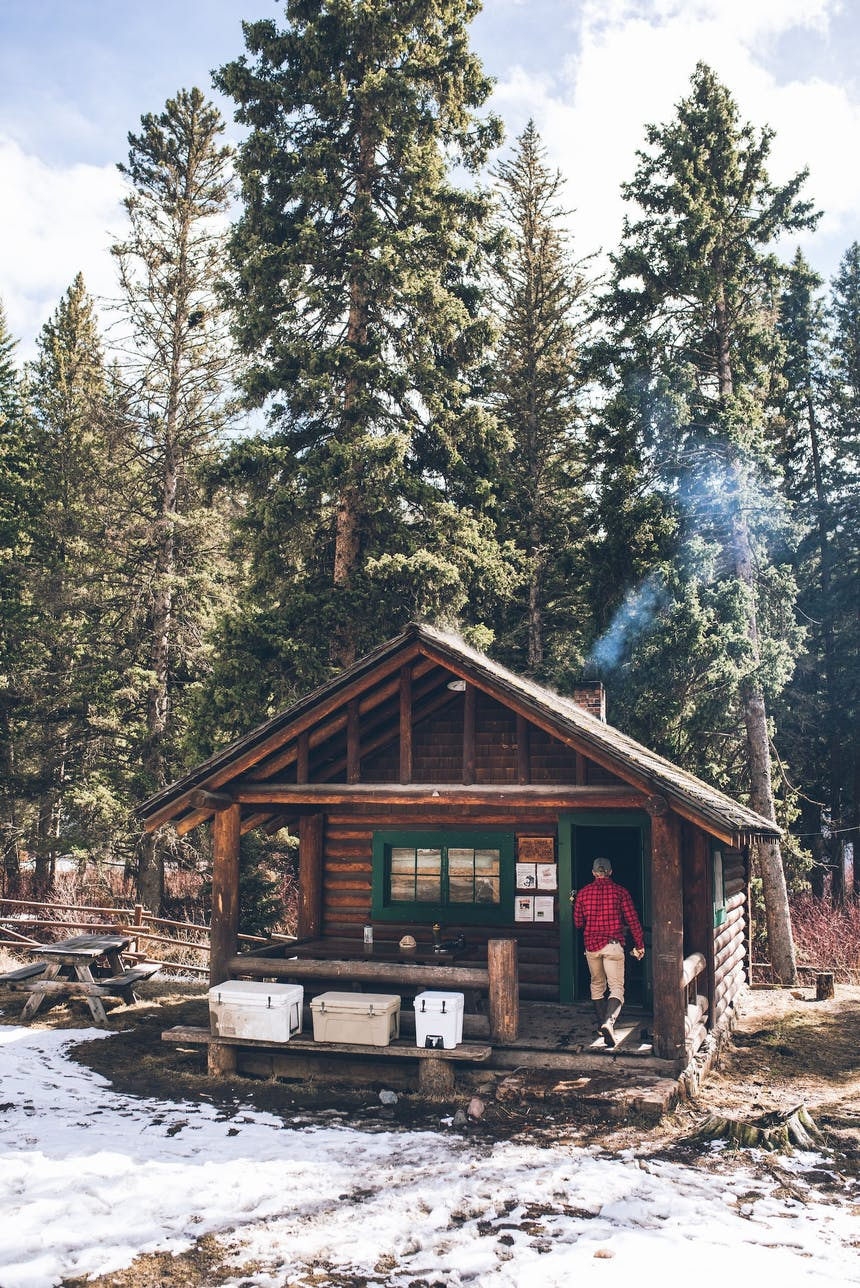 forest service cabin in snowy field with tall pine trees