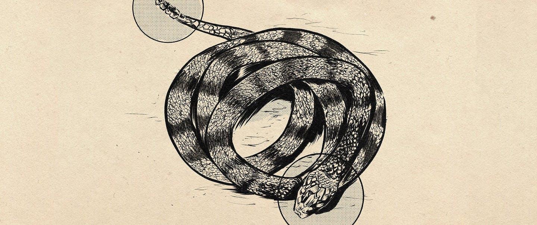 drawing of rattlesnake